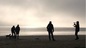 Dog friendly beaches in Carmarthenshire