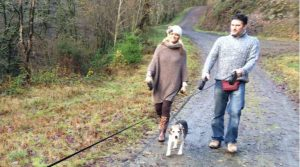 """The awesome 18,000 acre Brechfa Forest is """"sheep free"""""""