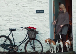 Dog friendly cottages at Brechfa Forest Barns